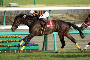【競馬】 キタサンブラック、次走は春天へ。鞍上は未定