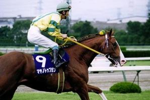 【競馬】 マヤノトップガンが種牡馬引退