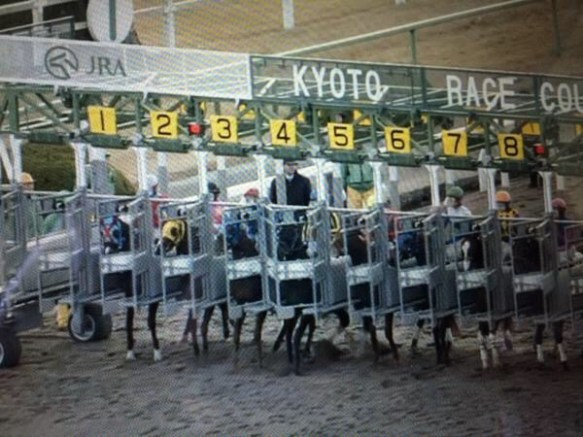 【競馬】 土曜京都7Rで4番が出遅れたのはゲートのせい?  元ジョッキー「JRAはきちんと説明するべき」