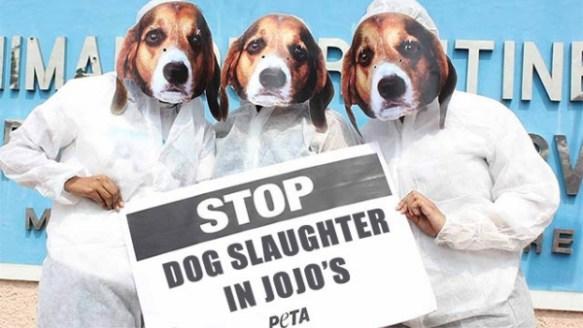【悲報】海外の動物愛護団体、ジョジョにブチギレる