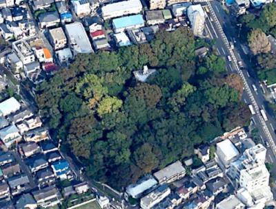 東京・大田区に残っていた江戸からの「奇跡の森」、開発で伐採 → 12階建て278戸の大規模マンションが建つ予定 … 大田区鵜の木1丁目「天明さんの森」
