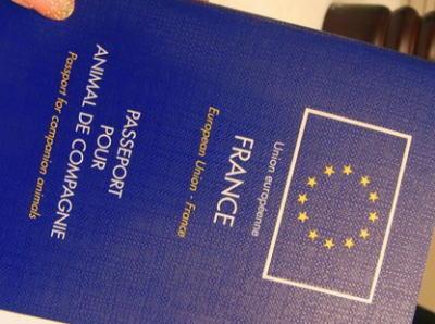 「渡航を規制するなど欧米ではありえない!パスポートを持つ事は市民の権利」と嘯いていたフランスで、シリア渡航を計画していた6人の旅券が没収される