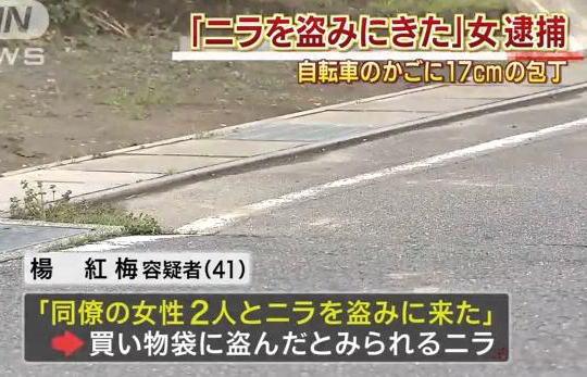 自転車に乗った中国籍の女「畑にニラを盗みに来た」 … 楊紅梅容疑者(41)を逮捕、前かごに刃渡り17cmの包丁と盗んだとみられるニラを所持 - 岐阜