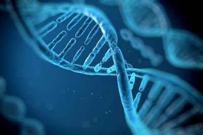 人間のDNA には過去に感染したウイルスの欠片が相当あるらしいぞ