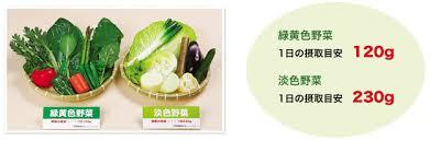 これが一日の推奨野菜摂取量らしいが毎日これだけの野菜食ってる人いるんか・・・?