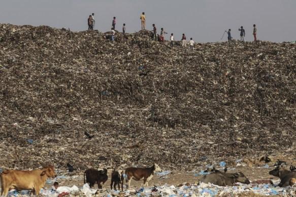 【閲覧注意】インド最大の都市「ムンバイ」の写真をご覧ください・・・・・・
