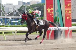 【競馬】 エイシンコクーン、無敗の7連勝なるか!? ペリドット賞競走