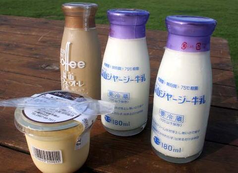 韓国人「日本に旅行中、多くの日本人が牛乳を飲んでいた。何であんなの飲むんだと思って飲んでみたら、まるで新世界の扉を開けたような気分だった」