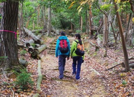 出雲市・旅伏山の登山道に山賊出現 … 1人で登山していた67歳女性にナイフを突きつけ携帯電話機を奪い、登山道を下って逃走