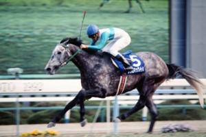 【競馬】 競馬記者に質問『ステイヤーと言えば?』  1位メジロマックイーン