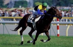 【競馬】 キングカメハメハのアンチの少なさは異常