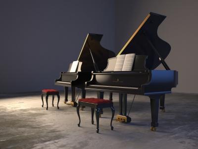 ピアノメーカーの音の違いって分かるもの?「スタインウェイ」が高音の響き、低音の力強さ、どんな音もハッキリと出る。最強