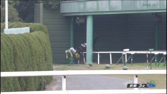 【競馬】 ランスタン、秋山騎手を投げ落とす