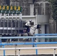 【競馬】 ゴールドシップ、ゲート再審査に合格!