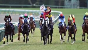 【朗報】 有馬記念の売り上げが大幅アップ! 400億円の大台を突破