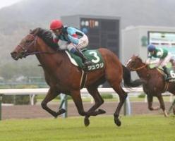 【競馬】 シュウジ、須貝厩舎に転厩  須貝「マイル路線を歩む」