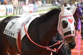 【競馬】 「トキメキユキチャン」「カタオモイ」「アンズチャン」 女子力高そう!カワイイ!競走馬名ランキング(牝馬)
