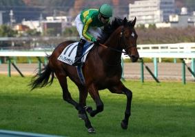 【競馬】 サトノダイヤモンドとディーマジェスティの馬連、前日付けで320円  ←どう思う?