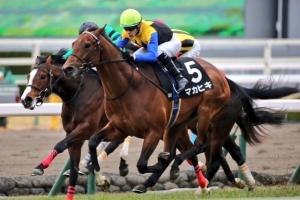 【競馬】 マカヒキ、放牧しても馬体重がダービー時と変わってないんだが…