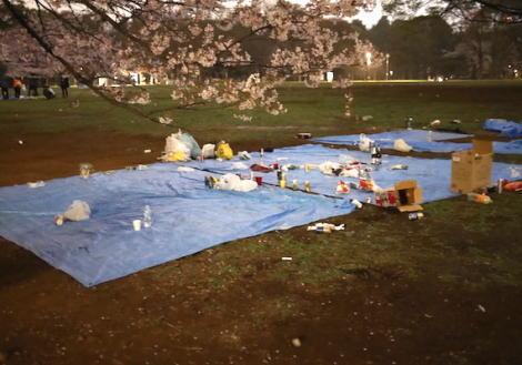 東京では今がまさに見頃の桜、花見の後の代々木公園の「ゴミ放置」がヒドい … きちんと片付けているグループが多いものの、やはり放置されるゴミ(画像)