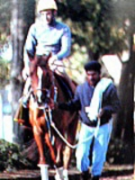 【競馬】 競走馬のキャッチコピーの最高傑作といえば?