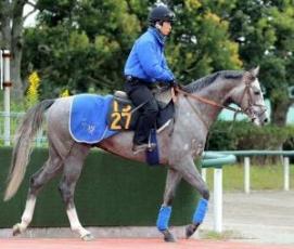 【競馬】 フォギーナイト(2億3000万 馬主・金子真人 厩舎・堀 騎手・ムーア)、11/12東京6Rでデビュー