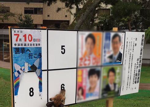 各党のポスターに隠された思惑や裏事情とは 党首の「顔」が使えない政党も