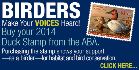 484-duck-stamp