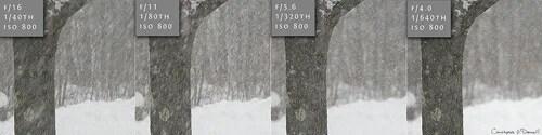 snowfall_aperture