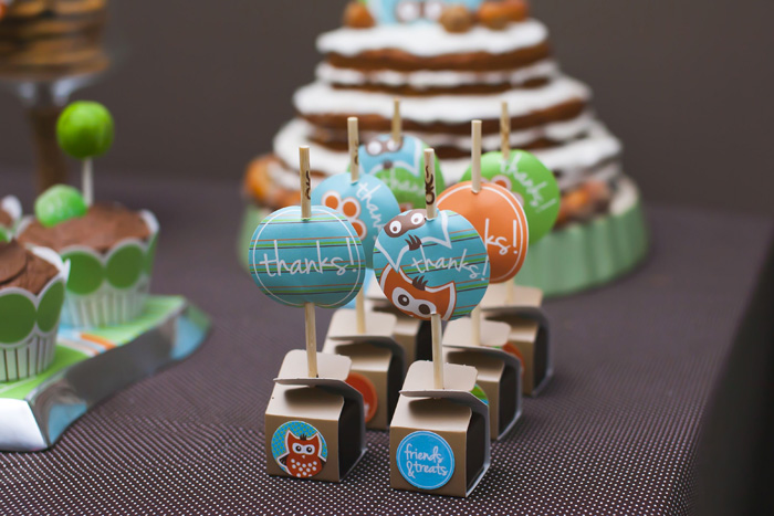 Woodland Sip and See Owl Dessert Table Favors Woodland Sip & See Guest Dessert Feature