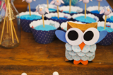 Owl Party Guest Dessert Feature