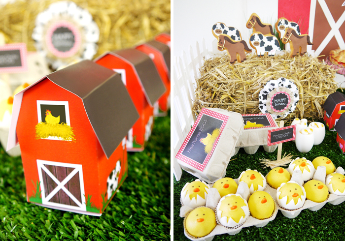 Barnyard Birthday Kids Parties