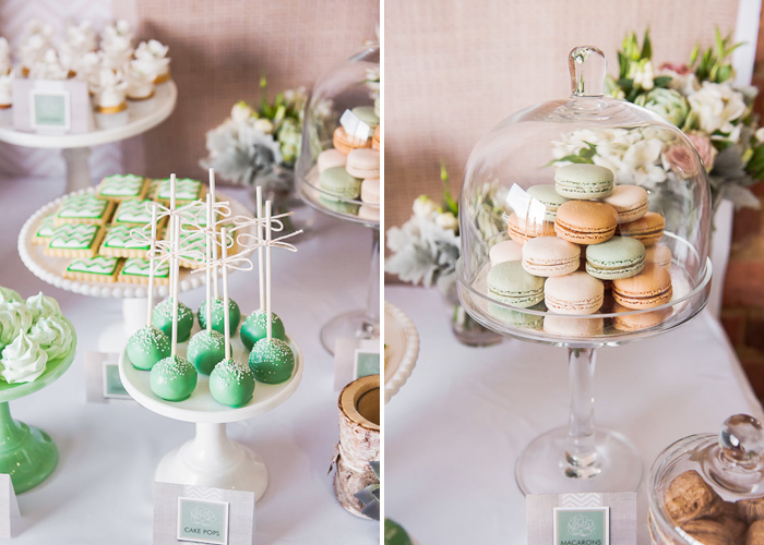 Cake Pops and Macarons