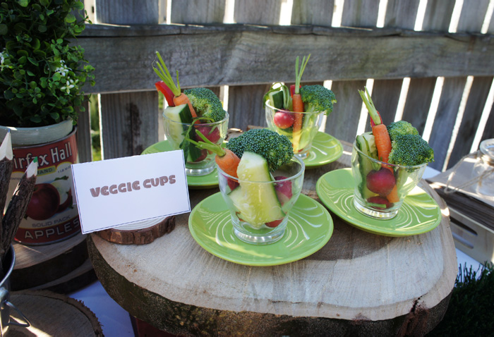 Veggie Cups Nature Lover Guest Dessert Feature