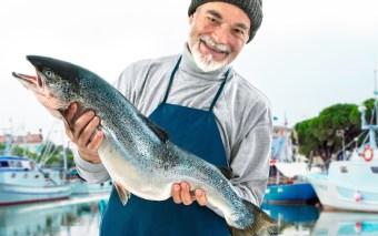 Fish: Trabalhar Motivado é uma Escolha