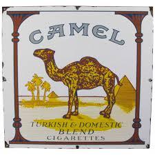 Camel キャメル