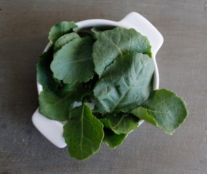 Baby Kale Nutrition