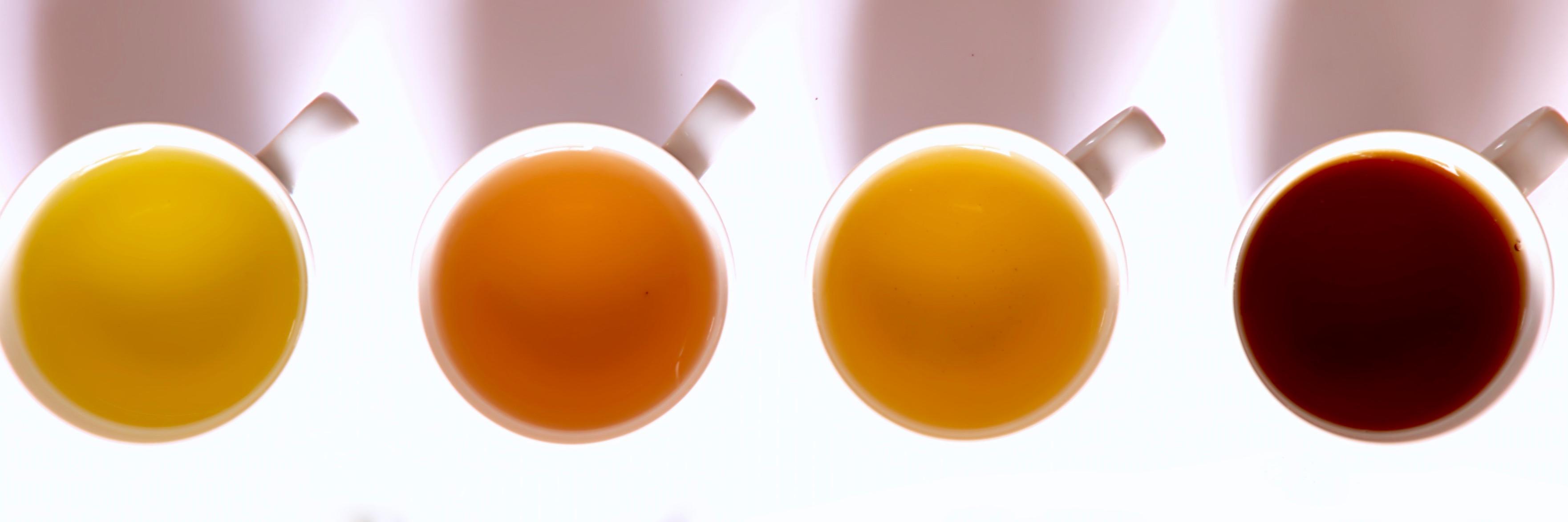 caffeine in tea