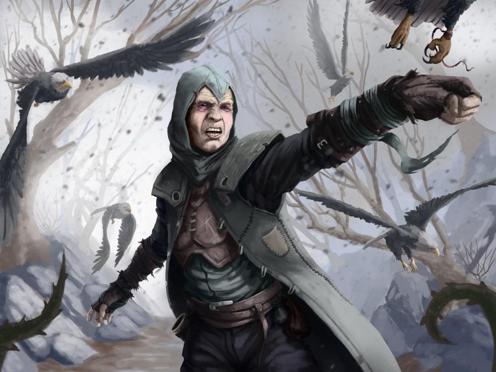 Master Of Eagles by Hurcem Kucukdogan