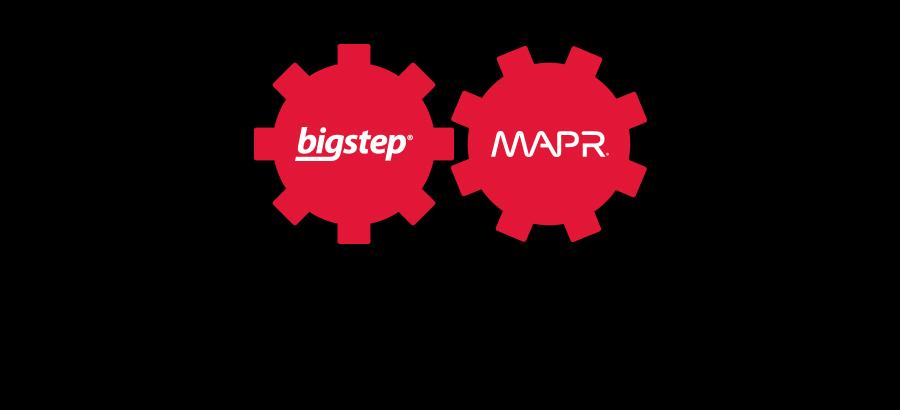bigstep-mapr