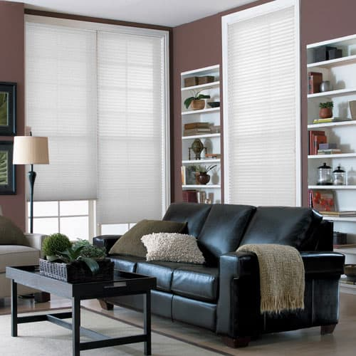 Blinds.com Brand Economy Pleated Shades