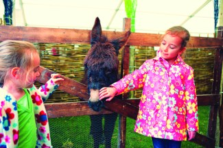 Easter Spring Farmyard