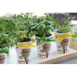Masterly Fresh Herb Party Favor Diy Fresh Herb Party Favor Diy Catch My Party Diy Herb Garden Pallet Diy Herb Garden
