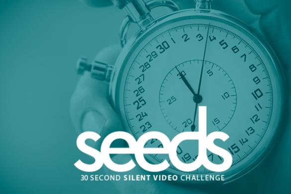 Celtx Seeds Challenge 4