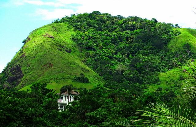 Muriqui, Brasil. Fotografía de Rhys Asplundh