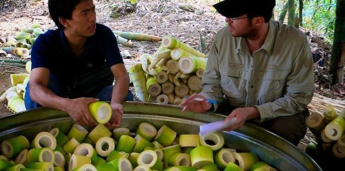 CIFOR researcher Nick Hogarth with a farmer looking at freshly harvested sections of bamboo shoots in the pot ready to be steamed, before being fermented and dried. Hannah Brodie-Hall/CIFOR