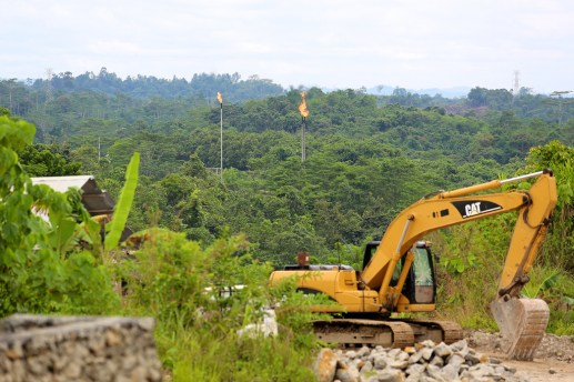 The rush to supply the world with pulp, paper, coal, nickel, tin and palm oil has seen more than half of Indonesia's forest cleared. Mokhamad Edliadi/CIFOR