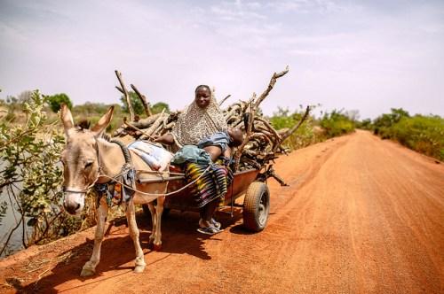 Necesitamos cuestionar nuestros propias creencias y llevar a la práctica la investigación sobre género, dijo Esther Mwangi, Investigadora Principal del Programa de Bosques y Gobernanza del Centro para la Investigación Forestal Internacional. CIFOR/Ollivier Girard