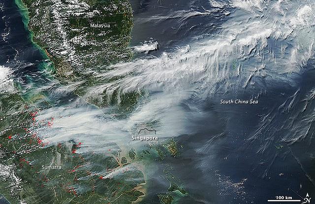 Penelitian oleh Center for International Forestry Research tentang kebakaran di Sumatera di tahun 2013 menunjukkan, hampir seperempatnya terjadi pada perkebunan industri kelapa sawit dan akasia, serta hanya sedikit yang terjadi di hutan alam.  Kredit Foto: gambar NASA oleh Jeff Schmaltz/LANCE/EOSDIS Respons cepat, Observatori bumi NASA