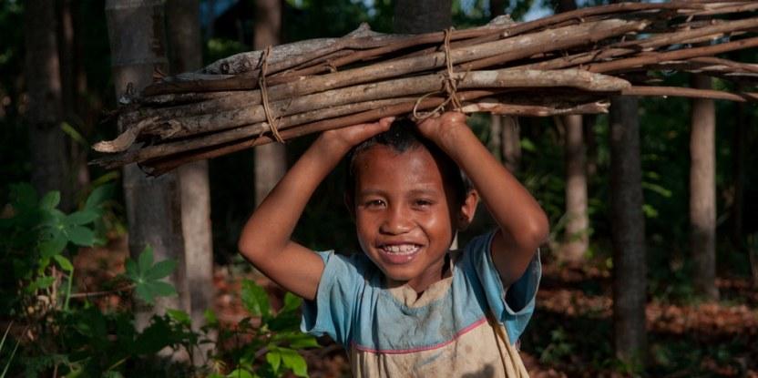 Un niño recoge leña en Nusa Tenggara Oriental, Indonesia La importancia de los bosques para la energía y los medios de vida los hace cruciales para su inclusión en los Objetivos de Desarrollo Sostenible (SDG, por sus siglas en inglés). Fotografía de CIFOR